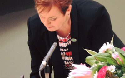 The Weird & Wonderful Life of an Assembly Member By Dawn Bowden